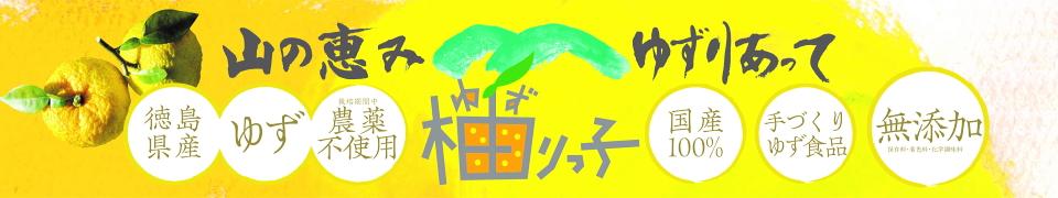 徳島ゆずみその柚リっ子 木頭産無農薬ゆず 無添加